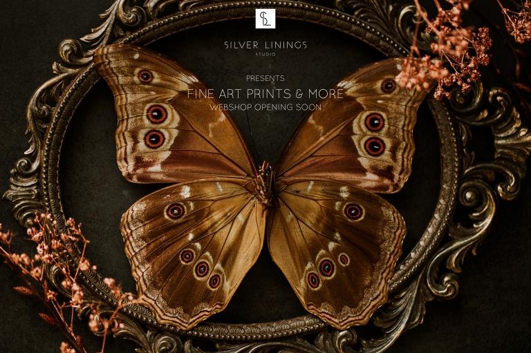 Webshop Silver Linings - fine art prints - ansichtkaarten - posters